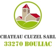Château Cluzel